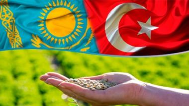 Turkish investors plan to build lentil processing plant for $ 17 million in north Kazakhstan region
